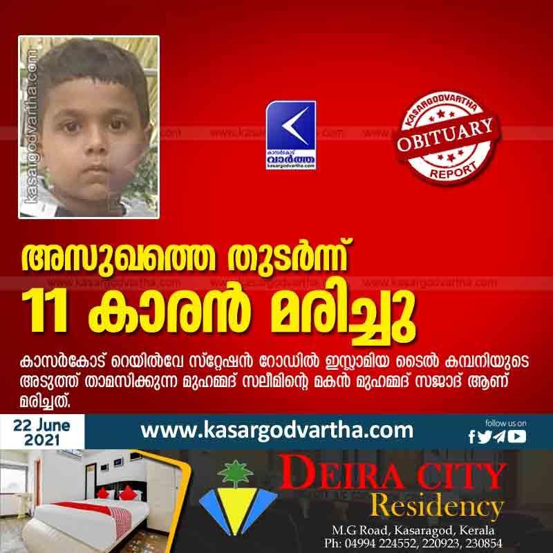 Kasaragod, Kerala, News, Obituary, 11-year-old boy died due to illness.