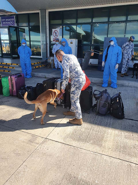 Canine security dog assisted by security personnel sniffing baggage lined up in the street  at Batangas Port