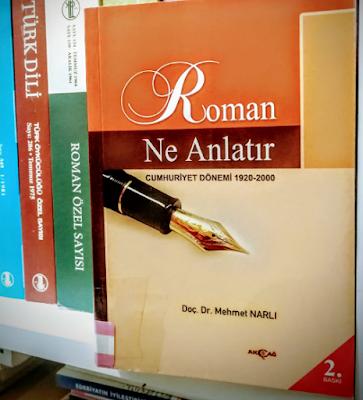DOÇ DR. MEHMET NARLI, ROMAN NE ANLATIR