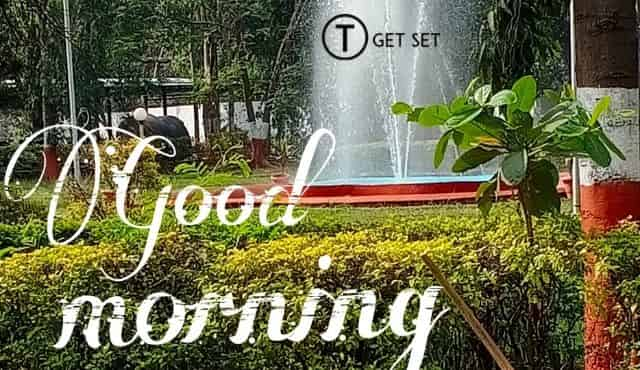good-morning-garden-image