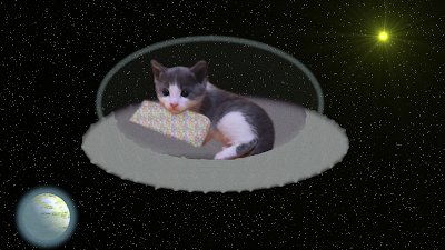 kitten in a flying saucer in space