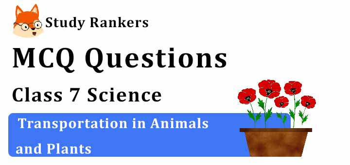 MCQ Questions for Class 7 Science: Ch 11 Transportation in Animals and Plants