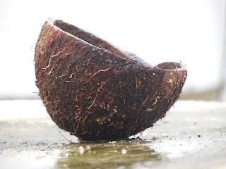 http://zielonekoktajle.blogspot.com/p/super-zywnosc.html#olej_kokosowy