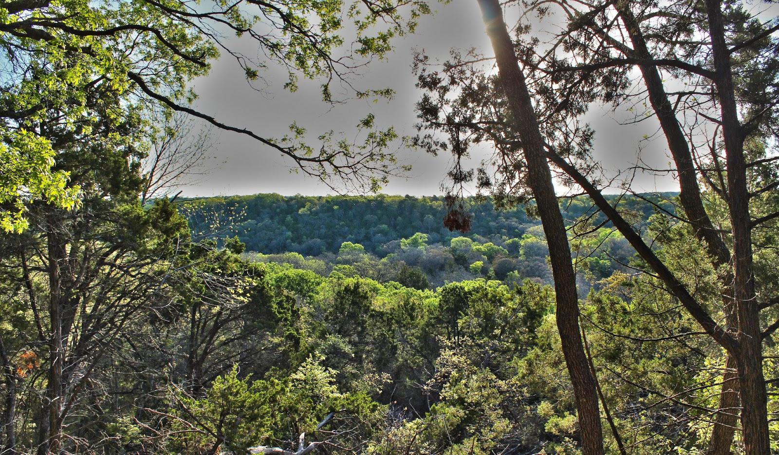 Image result for Dogwood Canyon Audubon Center Trails