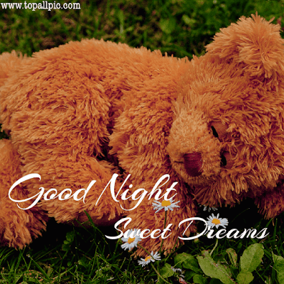 good night sweet dreams teddy bear images for her