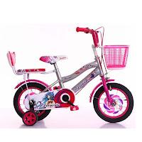 12 erminio 2402 new ctb sepeda anak