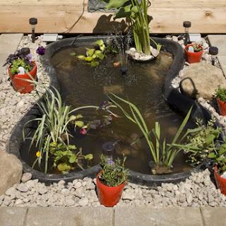 jardin aquatique id e d co. Black Bedroom Furniture Sets. Home Design Ideas
