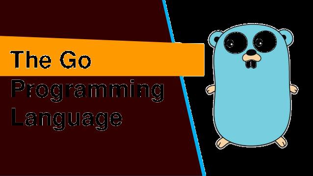 programming language go تعلم لغة البرمجة go  دورة لغة go