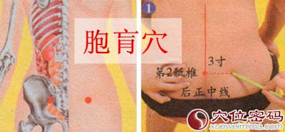 胞肓穴位 | 胞肓穴痛位置 - 穴道按摩經絡圖解 | Source:xueweitu.iiyun.com