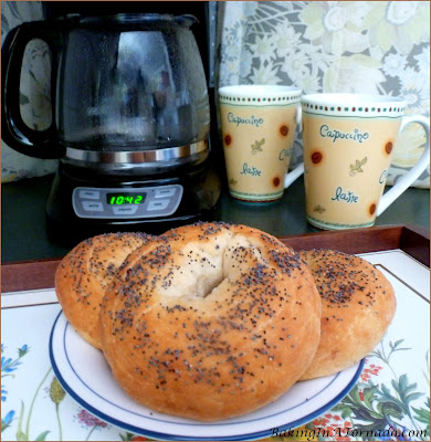 Onion Poppy Bagels: Crunchy crust, chewy flavorful center. Just 7 ingredients, quick and easy to make. | Recipe developed by www.BakingInATornado.com | #recipe #breakfast