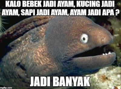 10 Meme 'Tebakan Hewan' Ini Walau Receh Tapi Bikin Ngakak