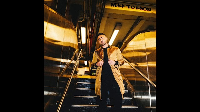 DOWNLOAD Jay Sean - Need To Know | MP3