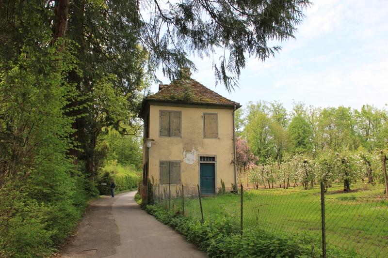 Bodensee im Mai Teil 5 Lindau Lindenhofpark Wasserburg
