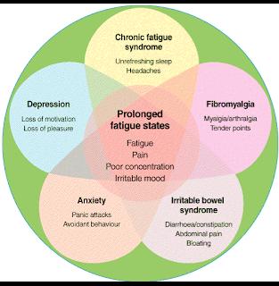 Fibro bloggers explain fibromyalgia