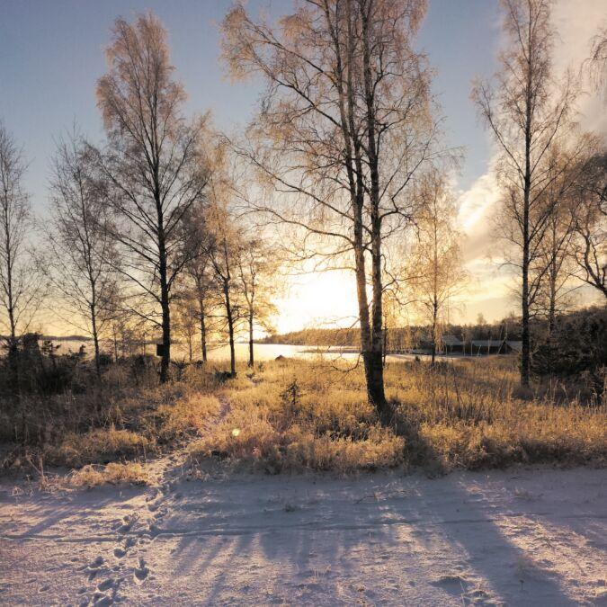 Frost och vintrig solnedgång vid havet