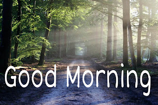 Pics Good Morning
