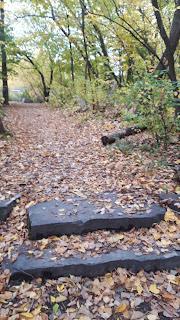 Sentier, feuilles mortes, l'automne, parc des Bateliers, Montréal
