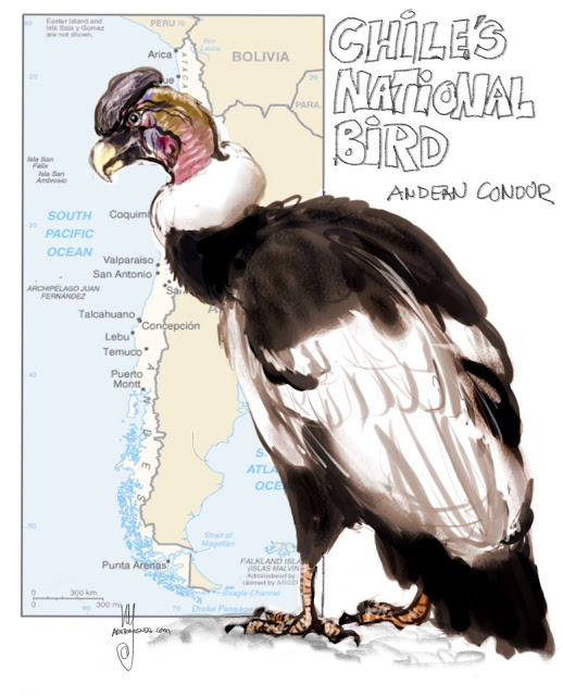 Chile's national bird Painting by Ulf Artmagenta