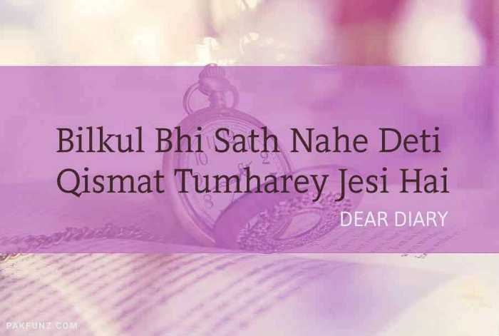 36+ Dear Diary Beautiful Shayari | Thoughts & Quotes Image