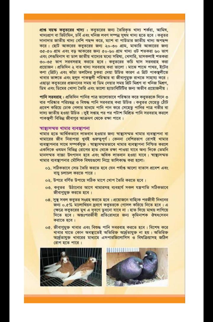 কবুতর পালন বই pdf download, কবুতর পালন বই পিডিএফ, কবুতর পালন বই পিডিএফ ডাউনলোড, কবুতর পালন বই pdf,