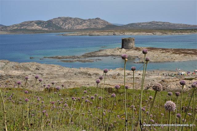 Sardynia z dziećmi- Najlepsze plaże w okolicach Alghero