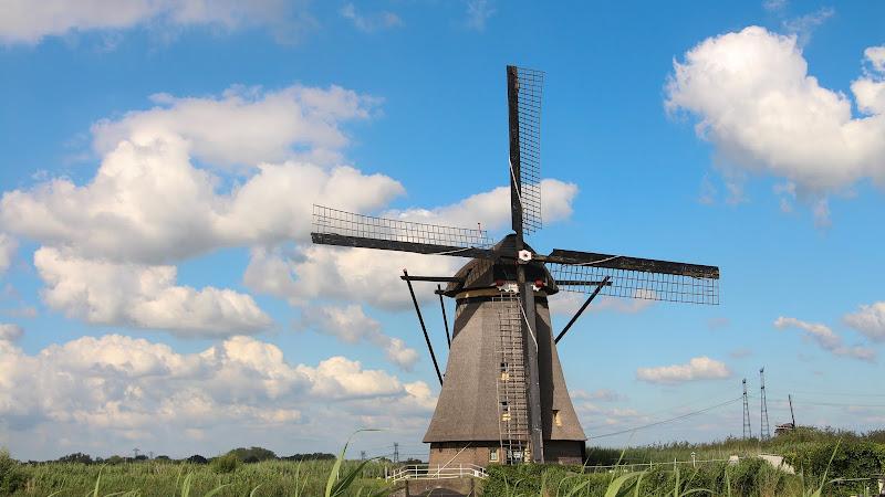Viking River Cruise: Kinderdijk Windmills