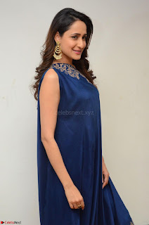 Pragya Jaiswal in beautiful Blue Gown Spicy Latest Pics February 2017 045.JPG