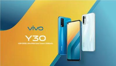 चार रियर कैमरे और 5000 mAh बैटरी के साथ Vivo Y30 लॉन्च, जाने फीचर्स