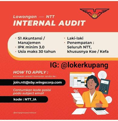 Lowongan Kerja Wings Group Sebagai Internal Audit
