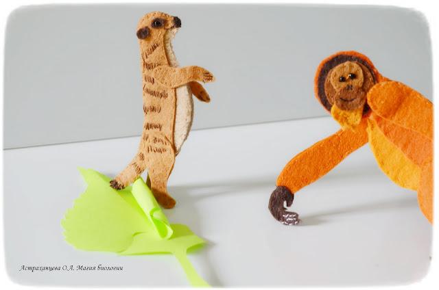 palchikovyj-teatr-orangutan-surikat-berezovyj-list