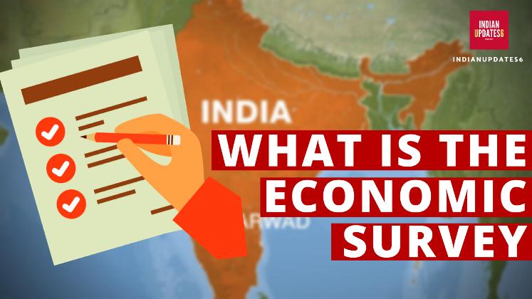 Economic Survey 2020