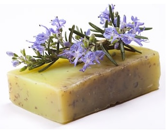 Rosemary Soap Making for Oily Skin