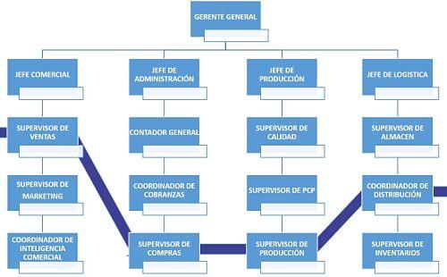 Departamentalizacion por procesos