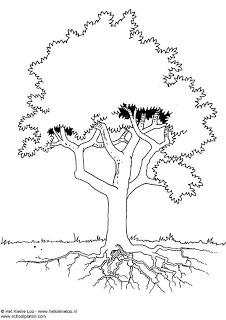 Cara Mengerjakan Psikotes Gambar Pohon Guru Ilmu Sosial