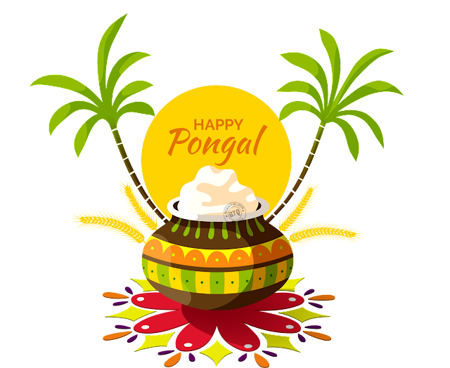 Pongal festival Greetings online, best pongal png elements for Free, sankranti festival wishes Quotes