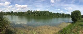 Karpfenangeln Frankreich | Lac d'Orient