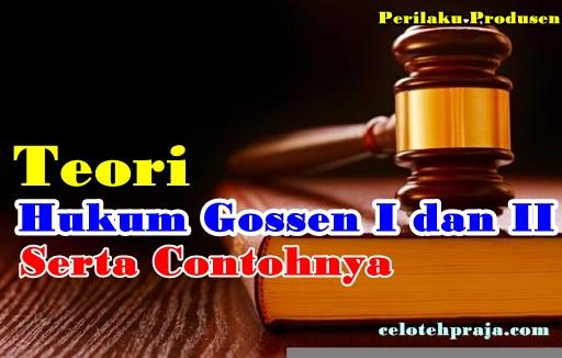 Teori Hukum Gossen I dan II Serta Contohnya | Perilaku Ekonomi