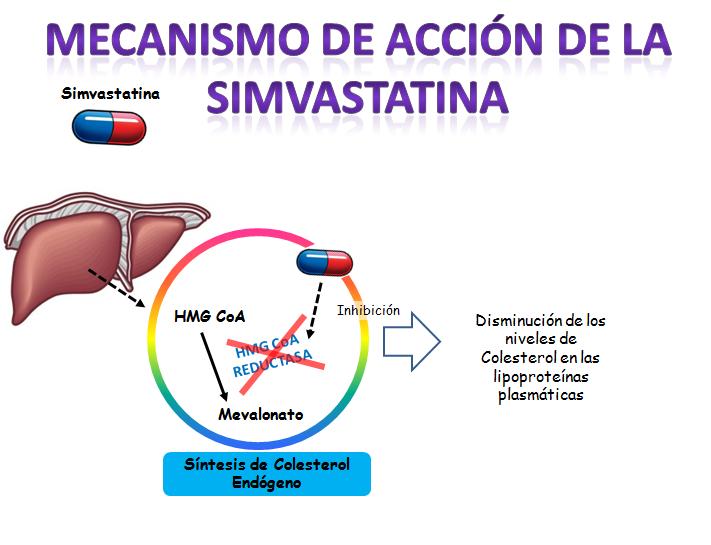 Simvastatina - Epidemia de estatinas: prescripción para todos los mayores de 50. Farmacéuticas desencadenadas