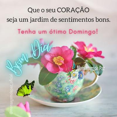 Que o seu Coração seja um  jardim de sentimentos bons. Tenha um ótimo Domingo! Bom Dia!