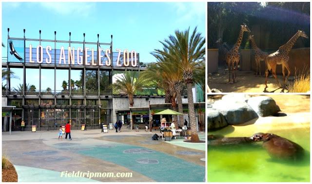 Boo LA Zoo