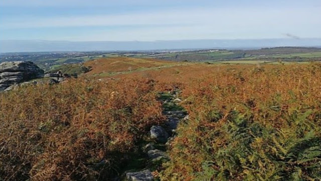 Archaeologists unearth possible evidence of early Neolithic farming communities in Dartmoor