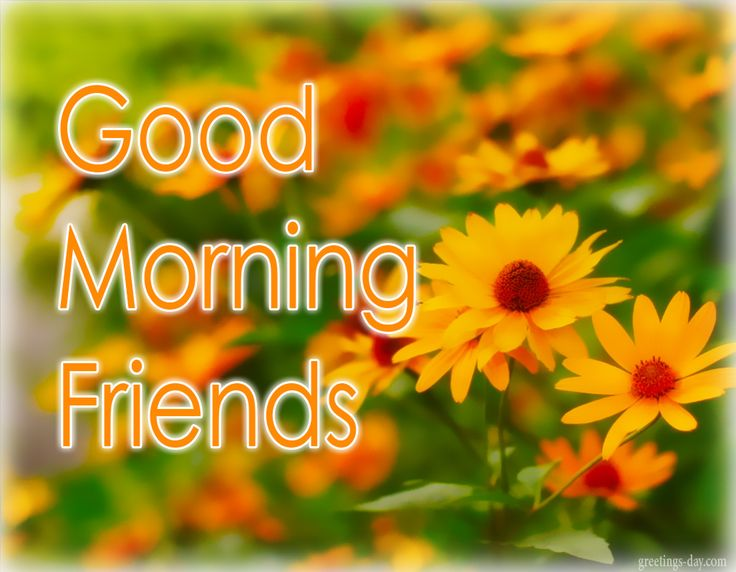 Images for good morning 30 free download new 2017 good morning shayari good morning love quotes good morning status good morning glitters good morning hindi good morning quotes friday m4hsunfo