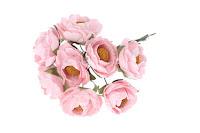 https://www.essy-floresy.pl/pl/p/Kwiaty-kamelii-rozowe/4868