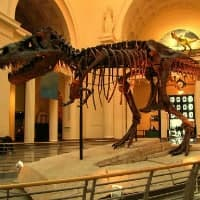 Big Historical Museum Escape