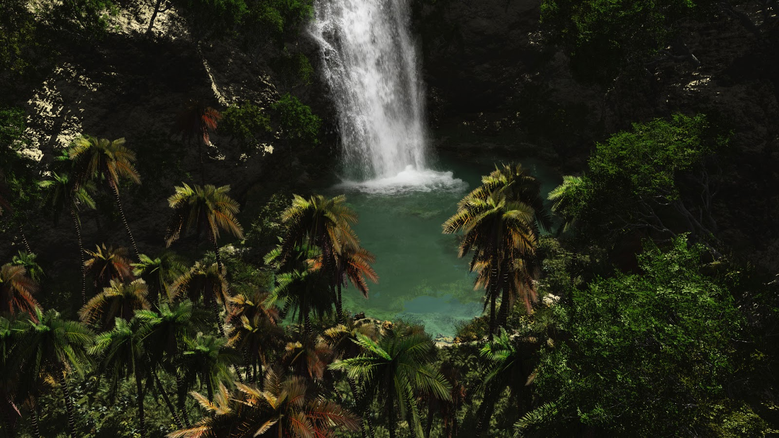 Rainforest Wallpapers
