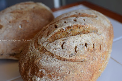 Pane semi integrale