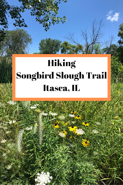 Hiking Songbird Slough Trail in Itasca, Illinois in the Chicago Suburbs