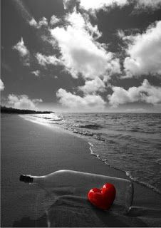 Não lamento a falta dum amor!