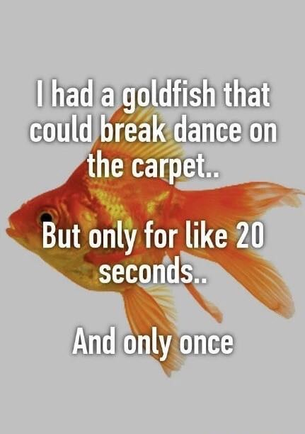 I had a goldfish that could breakdance on the carpet... But only for like 20 seconds. And only once.
