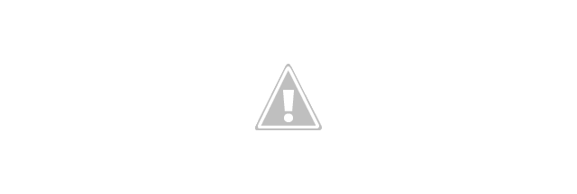Optional DNS Server Protocols With TLS Certificate